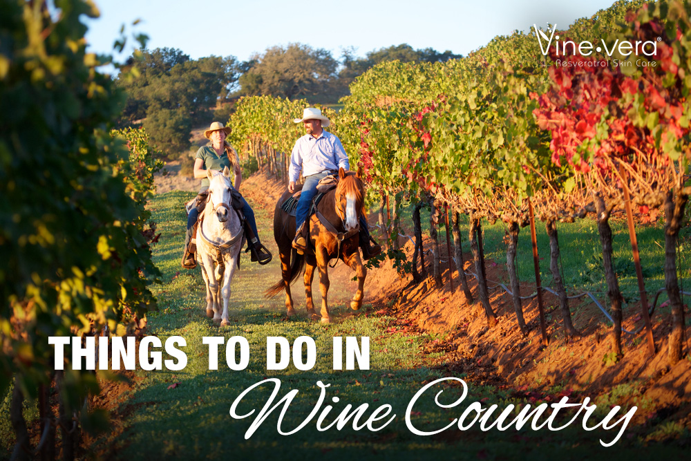 Beautiful image of a couple riding horses in a vineyard.