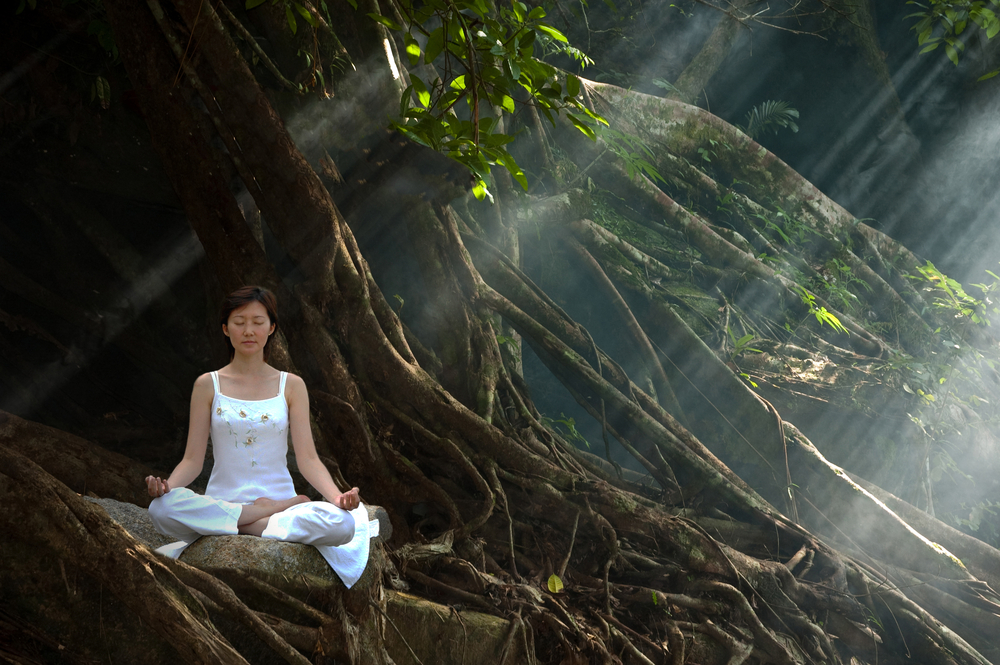 Woman practicing Ananda yoga in a natural setting
