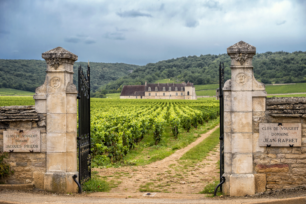 A chateau in Burgundy, famous for its beautiful vineyards.