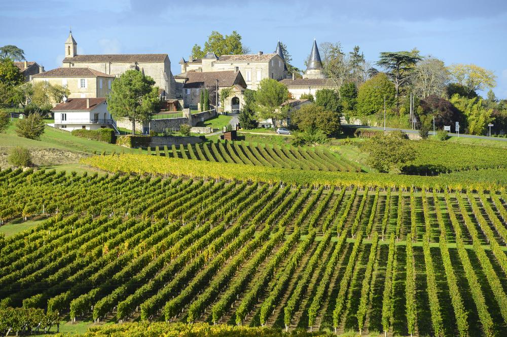 The Saint Emilion Vineyard in Bordeaux.