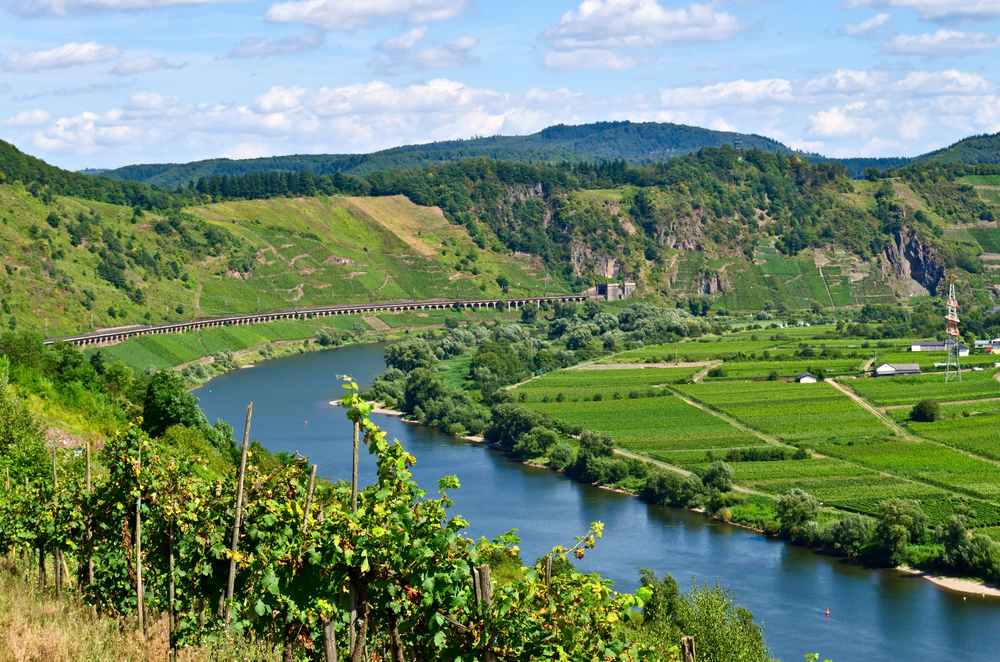The Mosel Region in Germany.