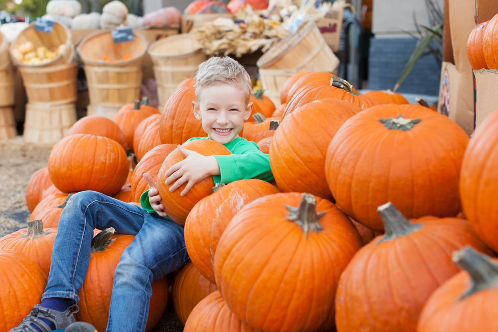 Excited child sitting with pumpkins