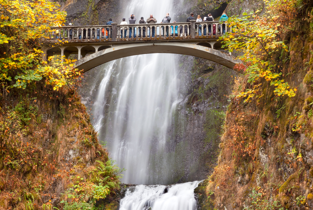 Water fall in the Columbia River Gorge