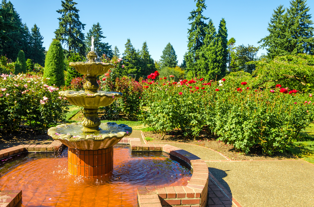 Fountain in the the International Rose Test Garden