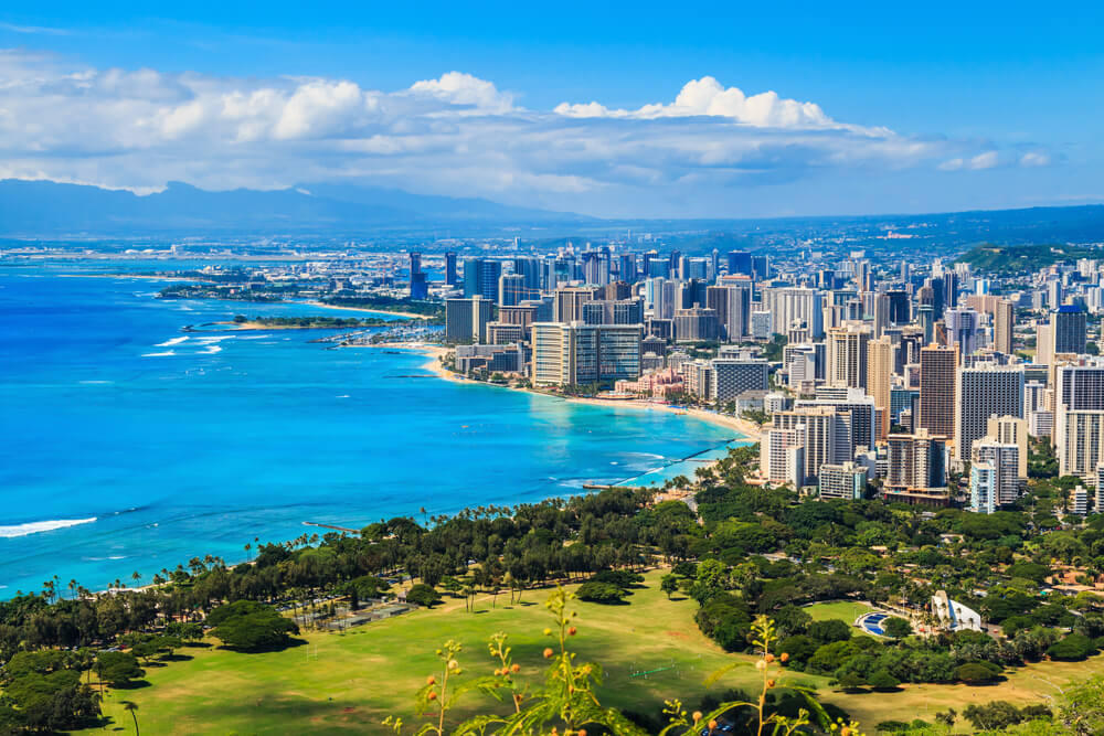 vine vera presents hawaii cityscape