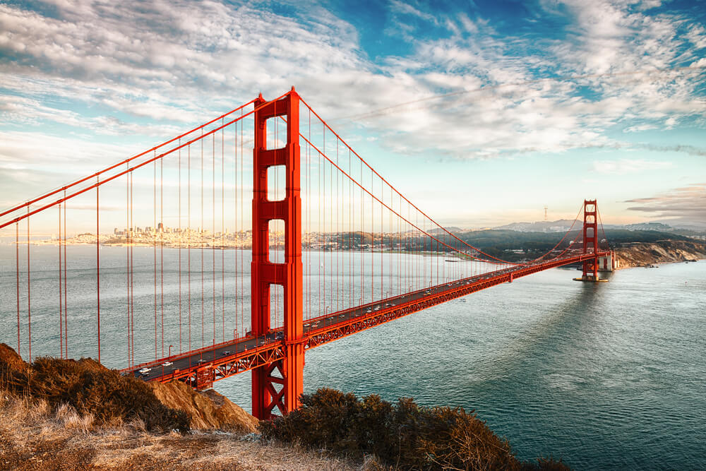 vine vera banner presents Visiting California: Panning in the Golden State